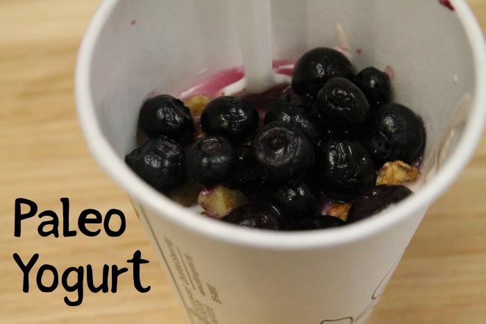 Paleo Yogurt